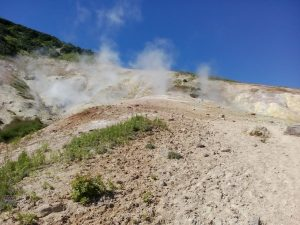 Little Vallye of Geysers on Mutnowka (4)