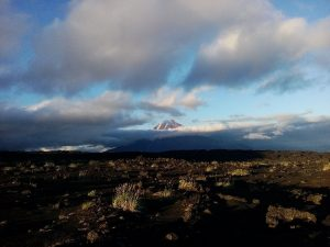 My Photos of Kamchatka (102)