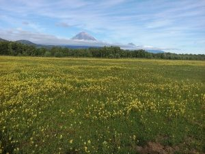 My Photos of Kamchatka (12)