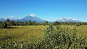 My Photos of Kamchatka (46)